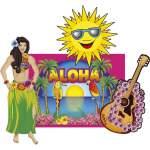 4 décorations thème Hawaï