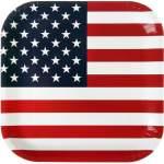 10 assiettes Etats-Unis