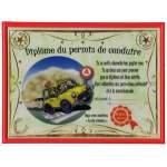 Diplôme du permis de conduire